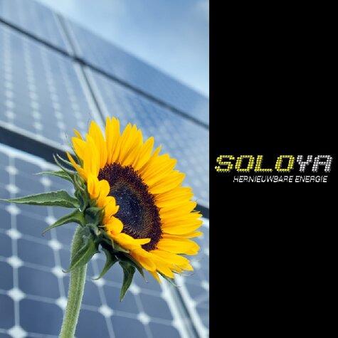 Webdesign Soloya
